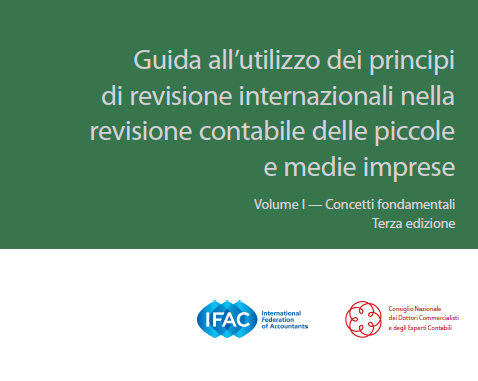 red flag finder conforme ai nuovi principi di revisione internazionale isa 240